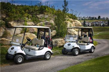 golf20153